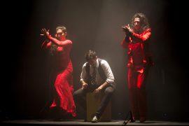 """15/02/13, Valencia.- Espectáculo flamenco """"Quebranto"""" de la compañia de Antonio de Verónica en el teatro Flumen de Valencia. (Foto: Biel Aliño)"""