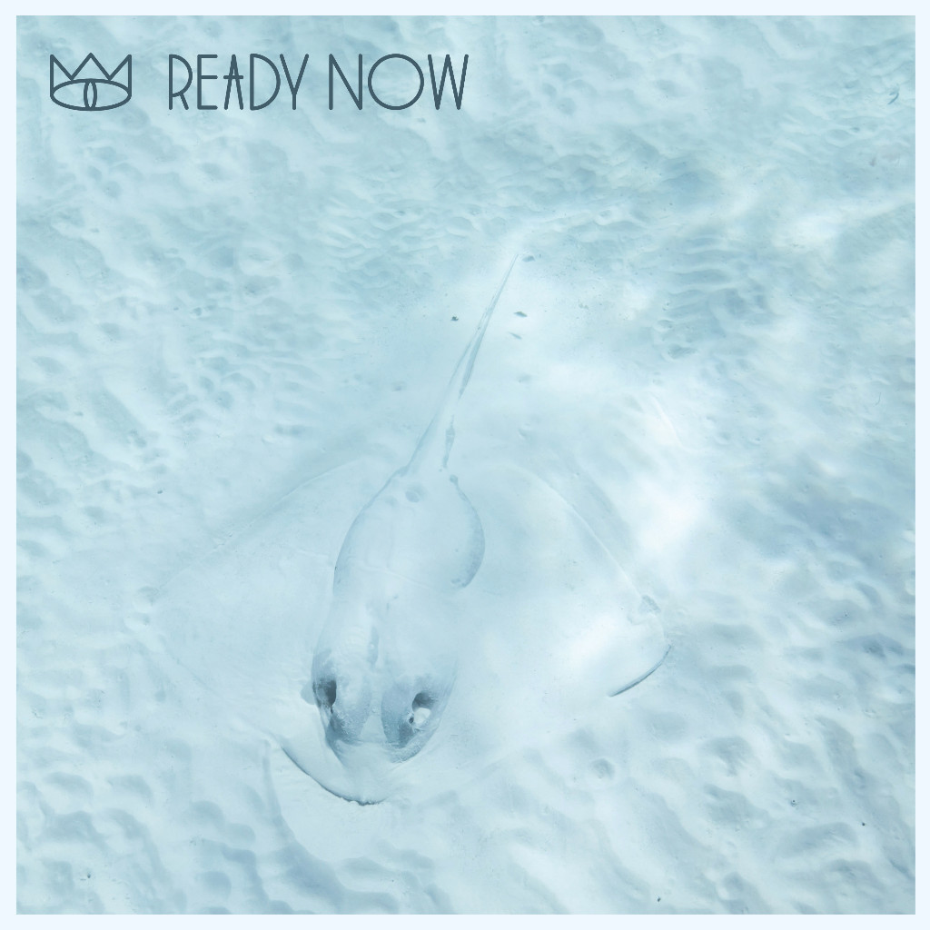 The Cat Empire presentan Ready Now