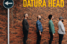 Datura Head11