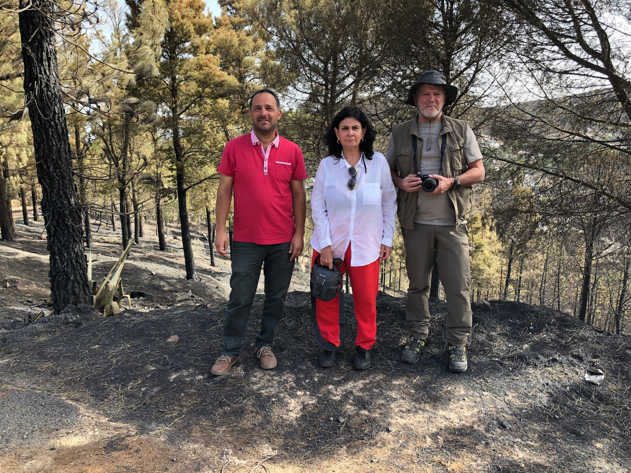 El Gobierno evalúa los daños del incendio en Risco Caído y su entorno