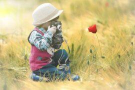 Taller fotografía naturaleza y jazz (infantil)