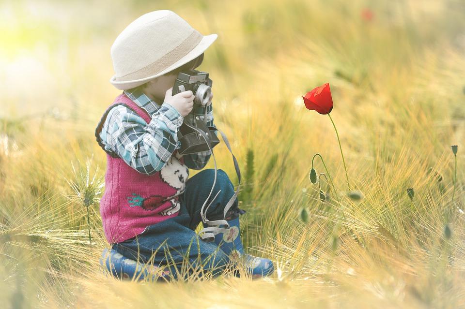 El MUNA ofrece un taller infantil de fotografía de naturaleza e introducción al jazz