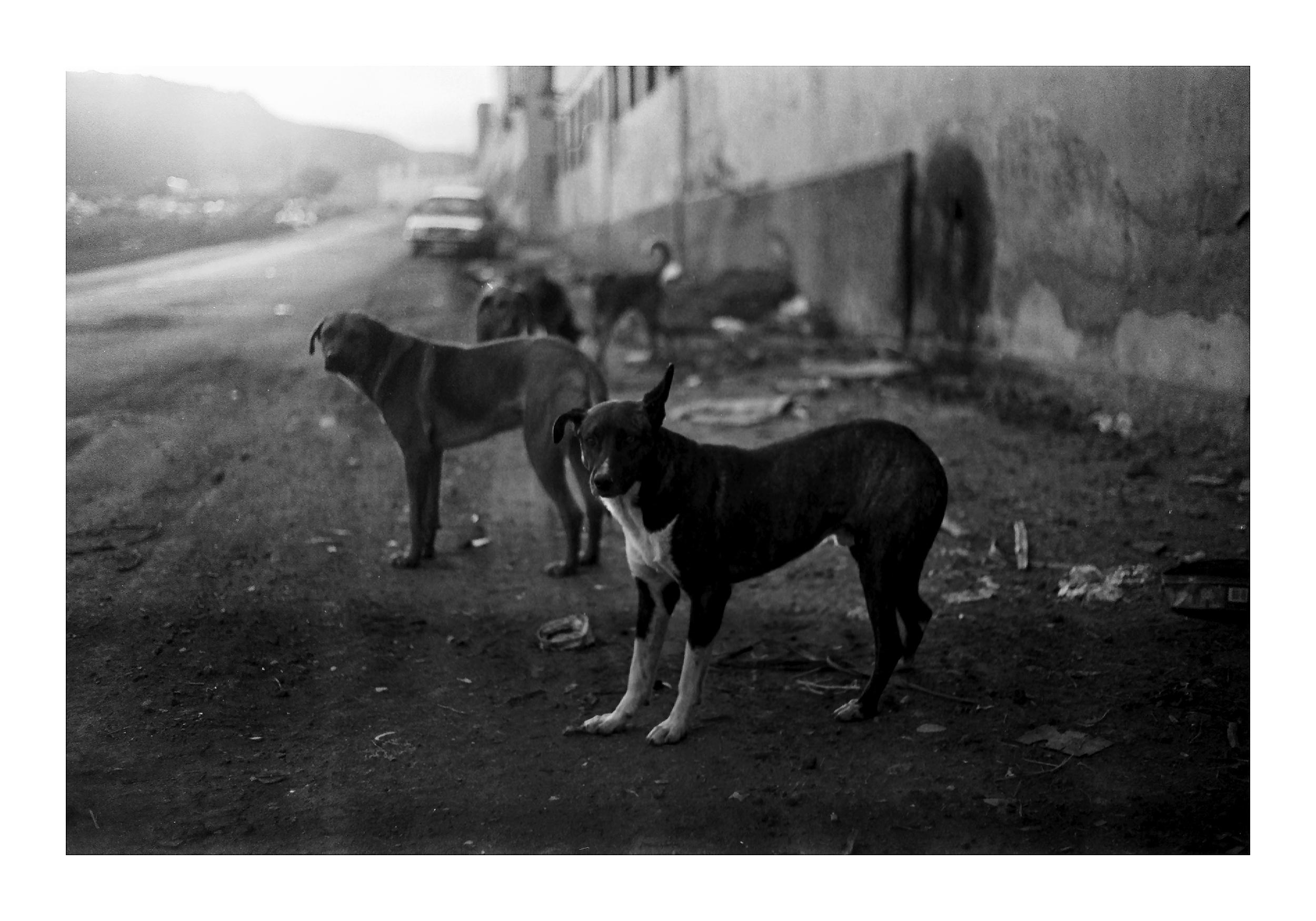TEA inaugura un encuentro con artistas de la Colección del Centro de Fotografía