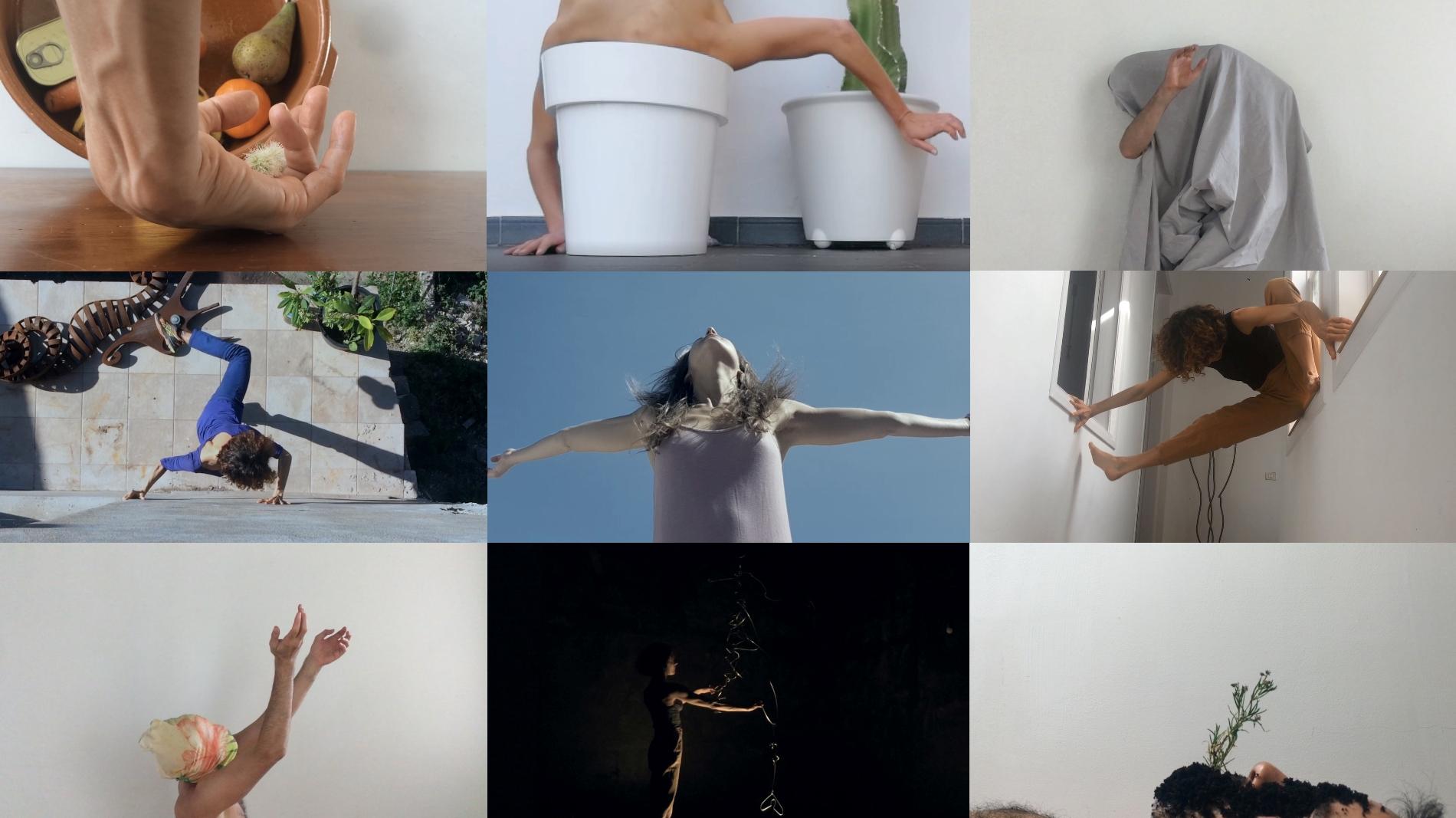 El Gobierno de Canarias celebra el Día de la Danza con el espectáculo online Cuando el bosque avance