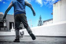 Imagen de fatimaguedesalonso para PHotodesdemibalcon