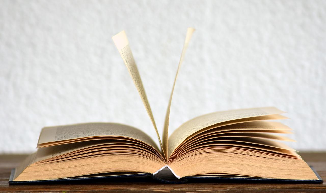 La Laguna invita a celebrar el Día del Libro compartiendo las lecturas que amenizan el confinamiento