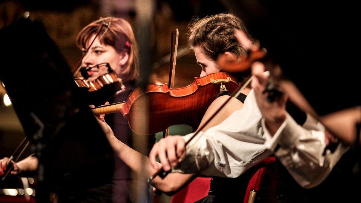 12 asociaciones de músicos crean la Unión de Músicos Profesionales
