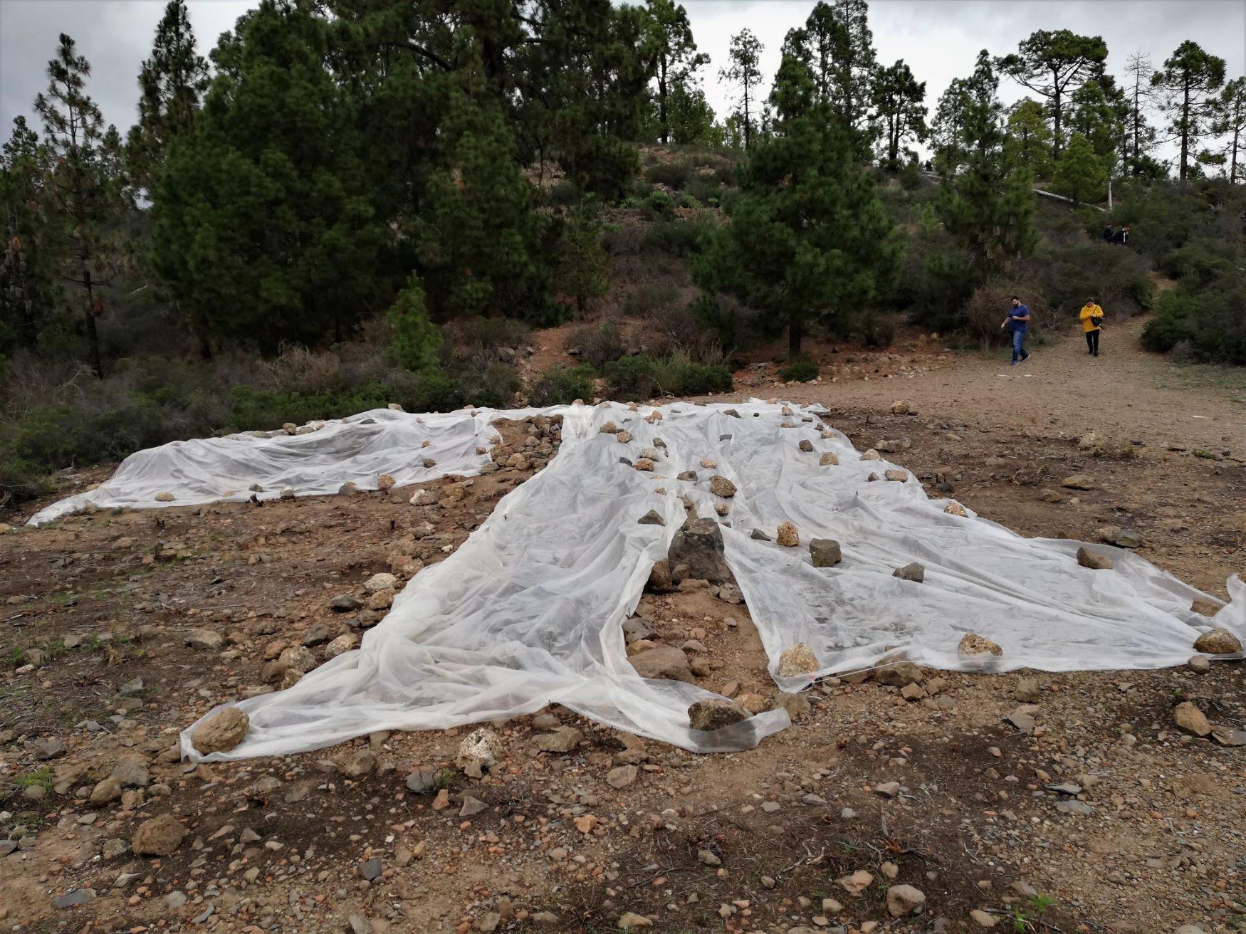 Patrimonio Cultural promueve campañas arqueológicas en el ingenio azucarero de Soler en Vilaflor