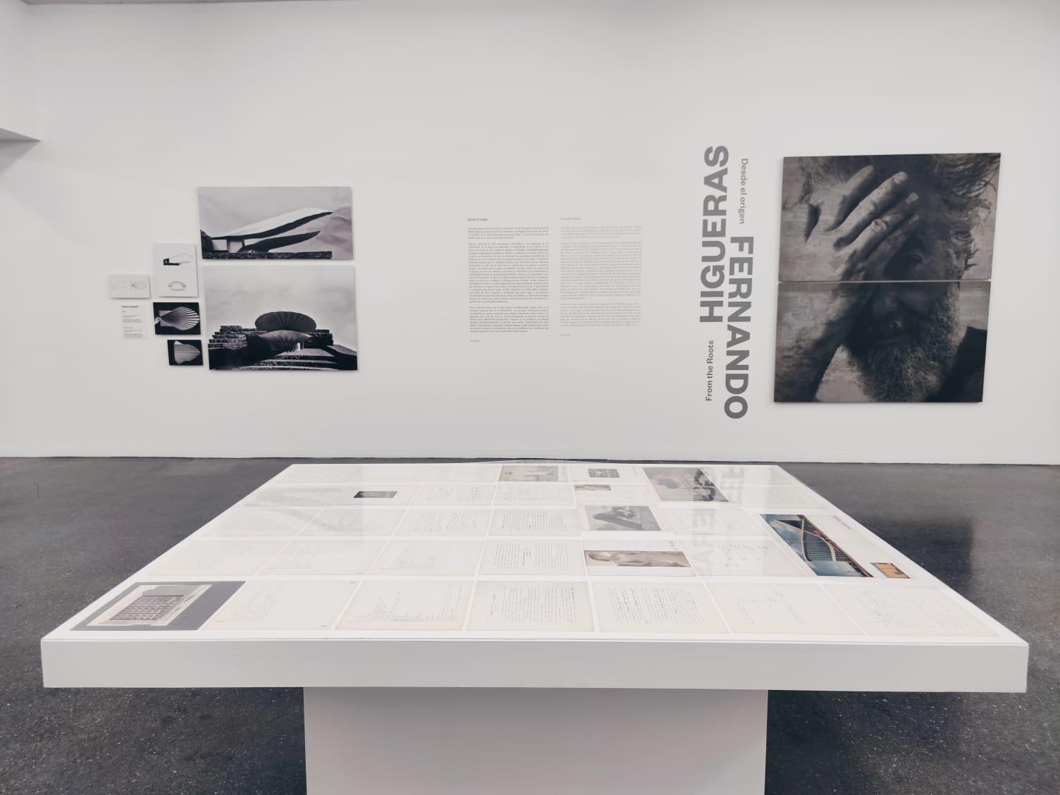 TEA Tenerife organiza una visita guiada a la exposición Fernando Higueras. Desde el origen