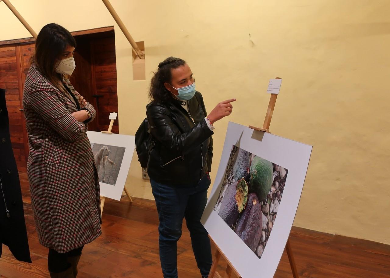 Salud-Arte en el ex-convento de Santo Domingo, sobre inclusión de personas con discapacidad intelectual